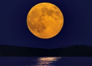 Full moon photo via Lee Capps. http://earthsky.org/space/video-the-moon-illusion