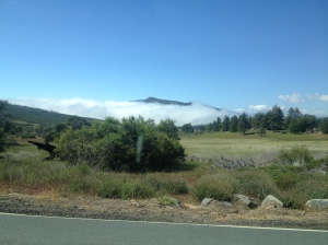 The mist, where we were headed, as seen from a distance