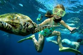 snorkel_source unknown