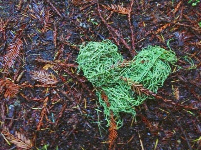 mossy heart.jpg
